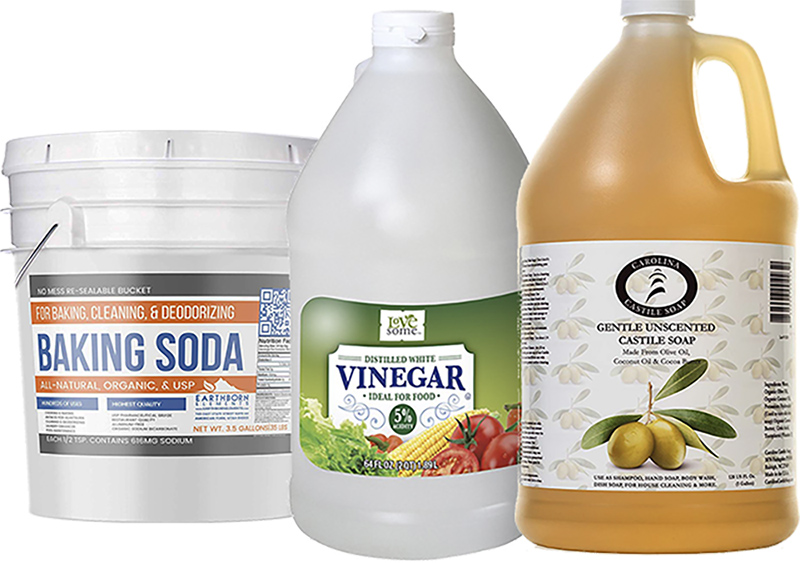 Essential Cleaning Ingredients