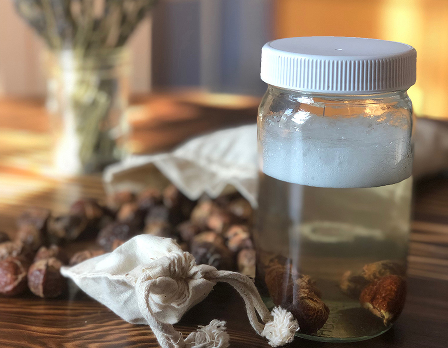 Soap Nuts - Natural Laundry Detergent